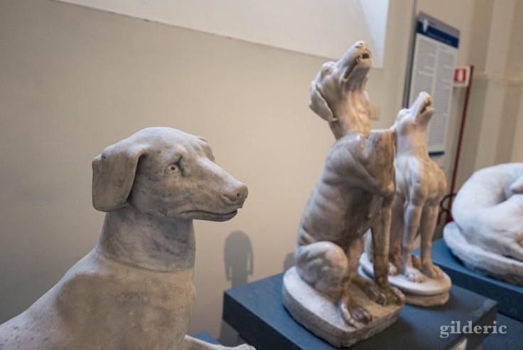 Meute de chiens en marbre au Musée archéologique de Naples