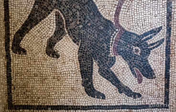 Cave Canem (mosaïque de Pompéi) au Musée archéologique de Naples