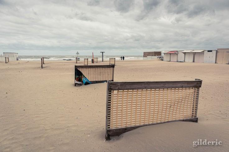 Tempête à Blankenberge : des courageux sur la plage