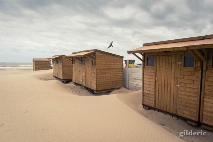 Tempête à Blankenberge : les cabines et la mouette