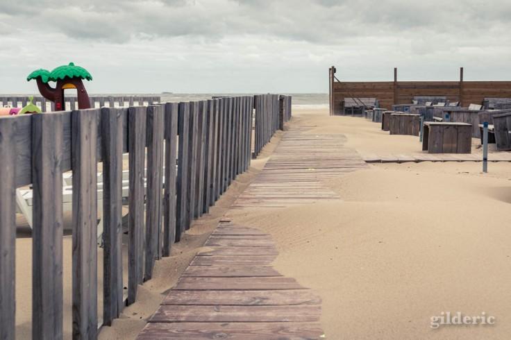 Tempête à Blankenberge : sortie sur la plage venteuse