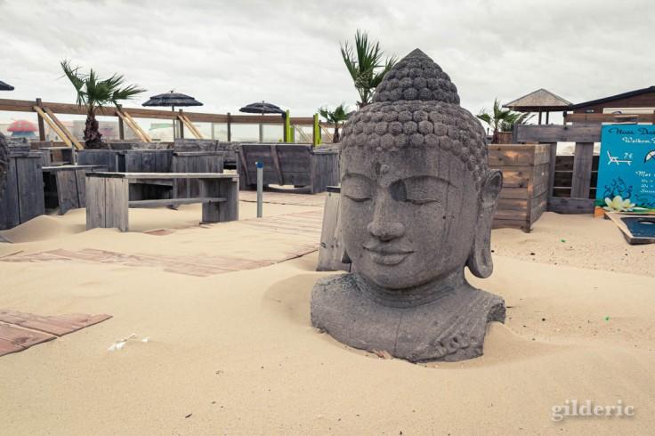 Tempête à Blankenberge : Le Bouddha du bar de plage