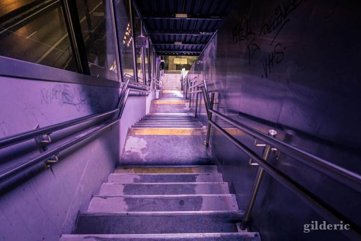 Gare de Visé la nuit : l'escalier vers les quais