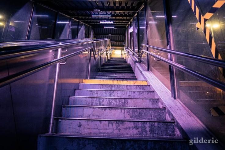 Gare de Visé la nuit : l'escalier vers les quais (montée)