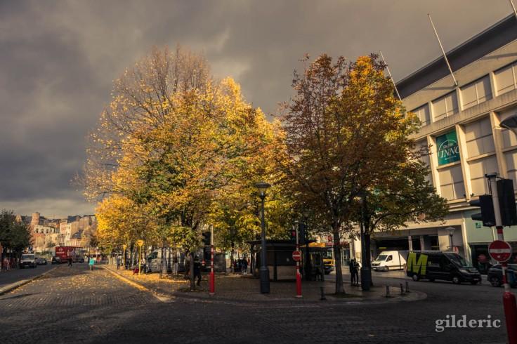 Automne à Liège : Place de la République française (photo)