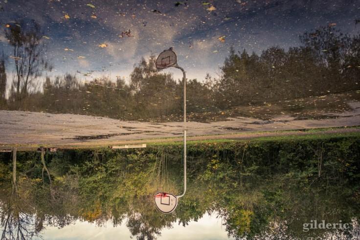 Balade autour du Fort de la Chartreuse en automne : un panier de basket reflété (photo)