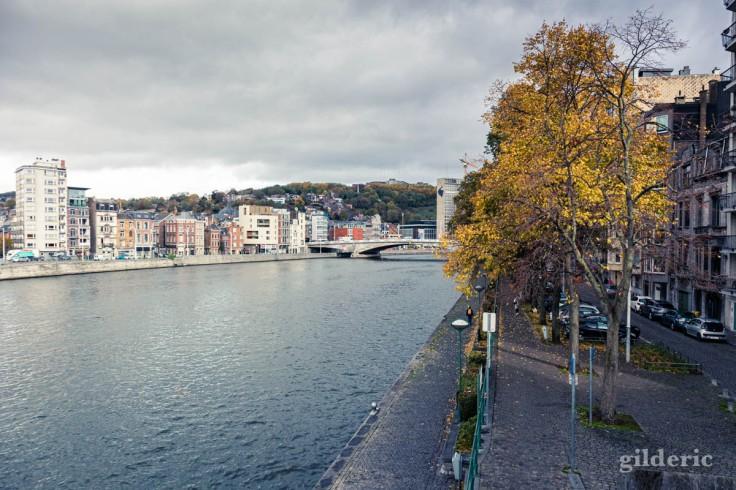 Automne à Liège : la Meuse vue de la passerelle Saucy (photo)
