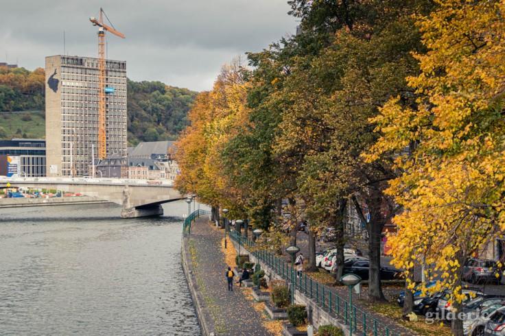 Automne à Liège : photo de la Meuse et des arbres sur les quais