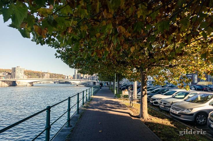 Liège en automne et les arbres en bord de Meuse