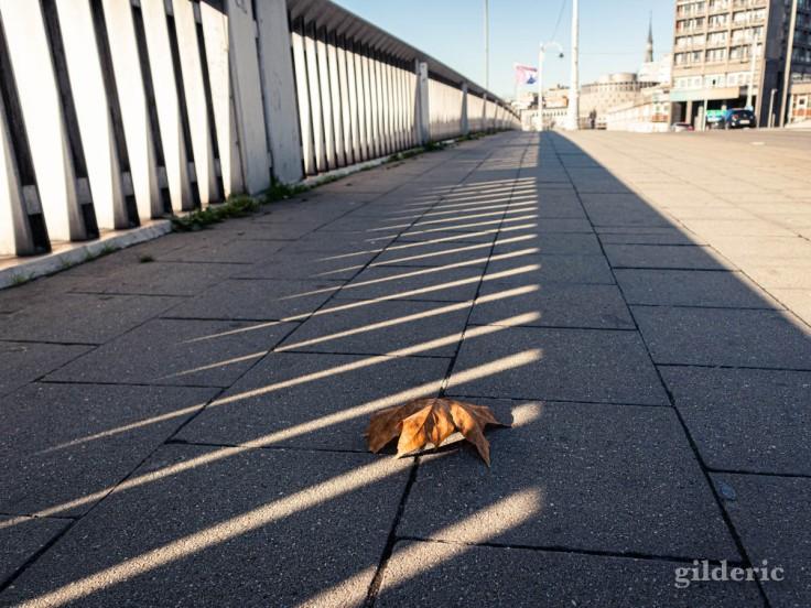 Liège en automne : sur le pont