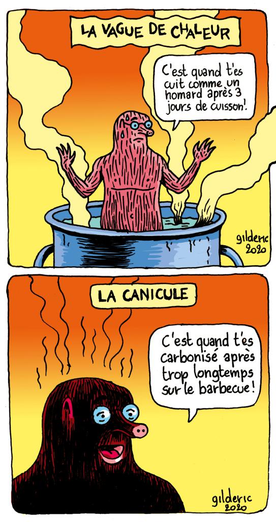 Taupe Chef : différence entre vague de chaleur et canicule (dessin)