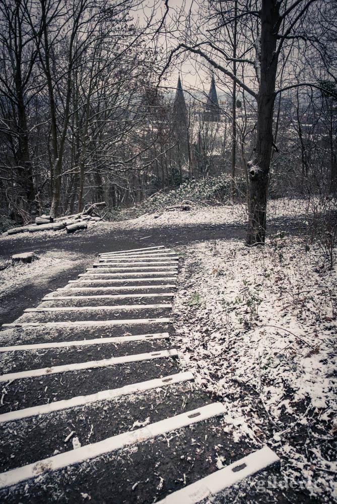 Escaliers sous la neige, bois des Oblats à Grivegnée (Liège)