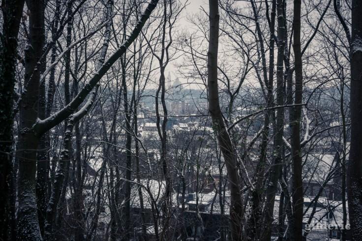 Mémorial de Cointe à travers un rideau d'arbres (parc de la Chartreuse)