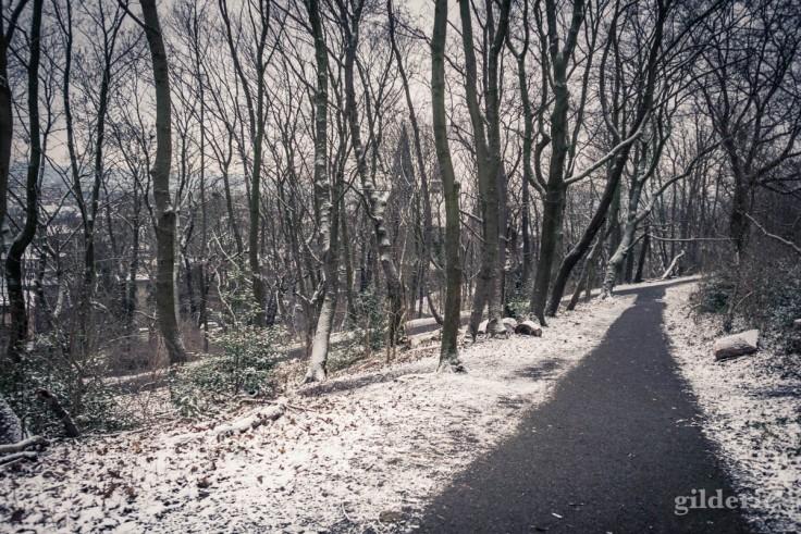 Parc des Oblats sous la neige