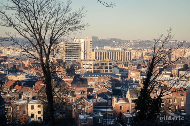 Les toits de Liège vus depuis le parc de la Chartreuse