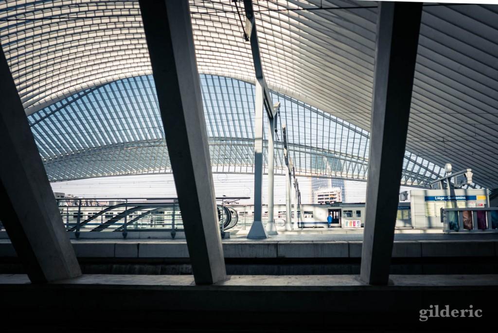 Expo Napoléon : au-delà du mythe, gare de Liège-Guillemins : vue de la gare