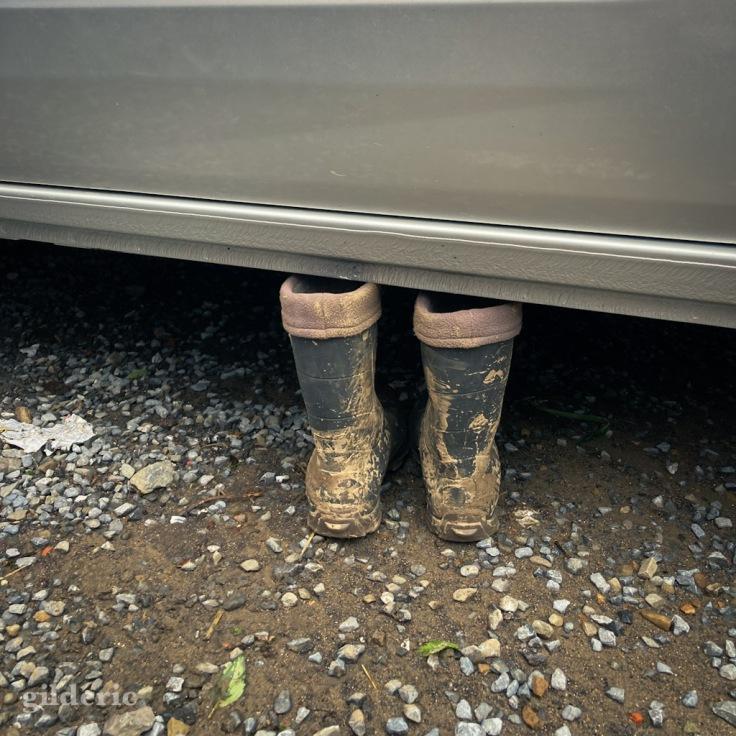 Des bottes et de la boue (après les inondations à Theux)
