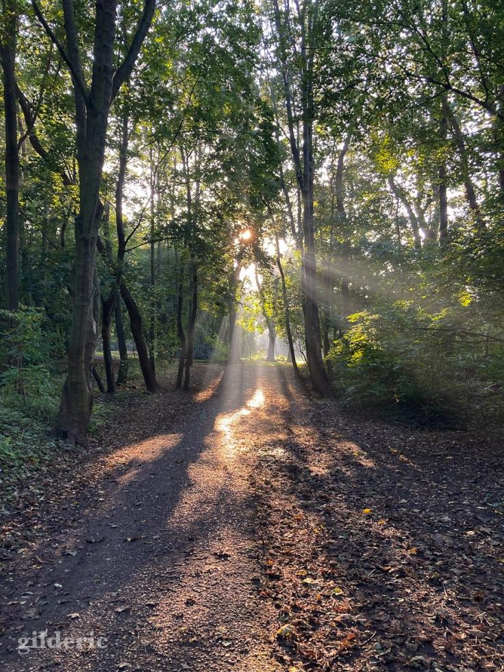 Magique octobre-rayons de lumière d'automne (Fort de la Chartreuse)