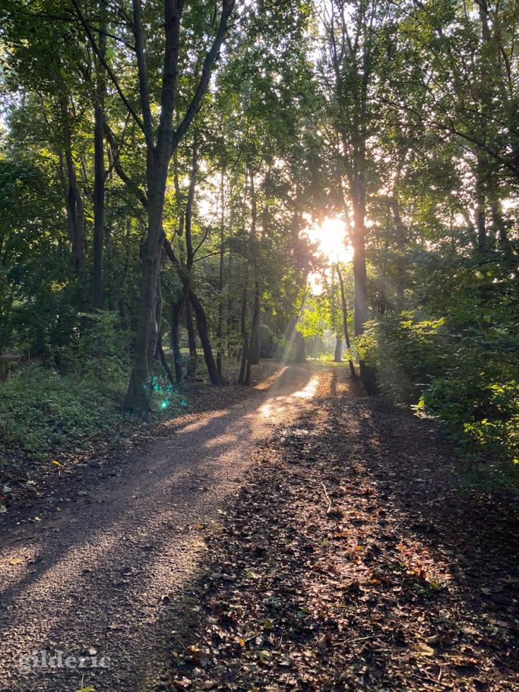 Enchantement d'automne - Fort de la Chartreuse