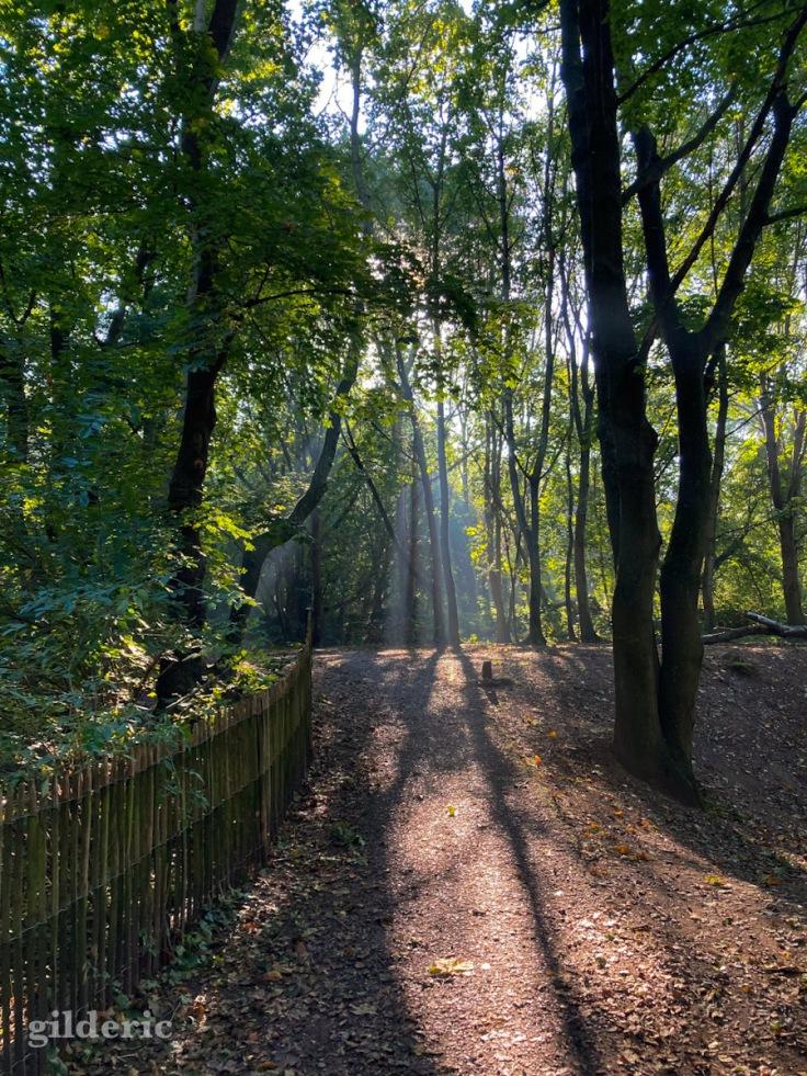 Lumière (d'automne) au bout du chemin - Fort de la Chartreuse